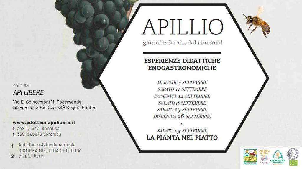 APILLIO